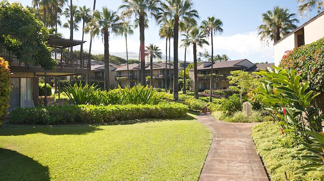 Eleven different floor plans to choose from at Wailea Elua Villlage