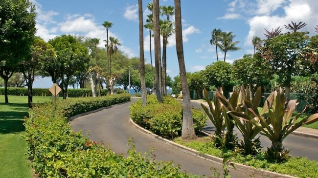 Kamaole Sands Road with manicured landscaping