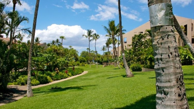 Kamaole Sands grounds complemented by the park across the street