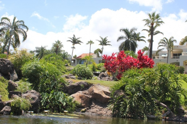 Tropical landscaping are throughout the grounds of Palms at Wailea
