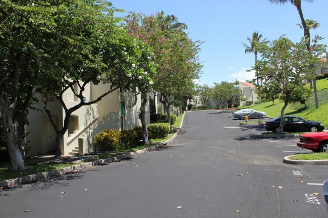 Drives with plenty of parking for residents and guests of Palms at Wailea