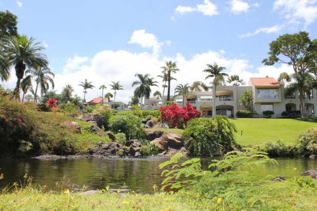 Beautiful waterfront settings on the Palms at Wailea condo property