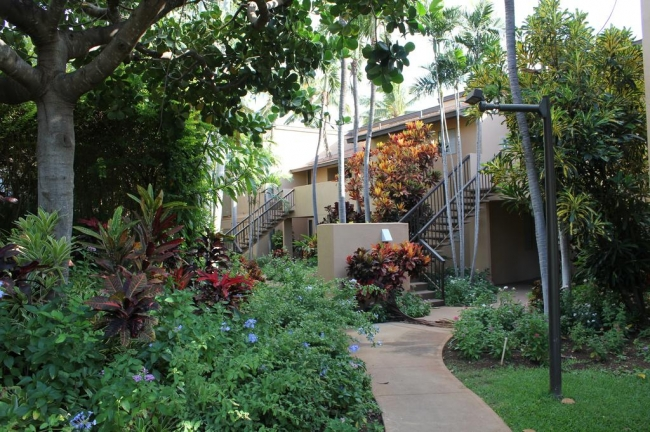 Privacy abounds at Wailea Ekahi with matured trees and shrubs