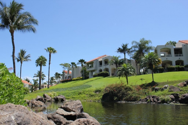 Looking up from the lagoon to the Palms at Wailea condo buildings