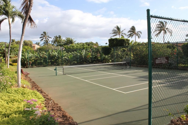 One of 2 paddle tennis courts