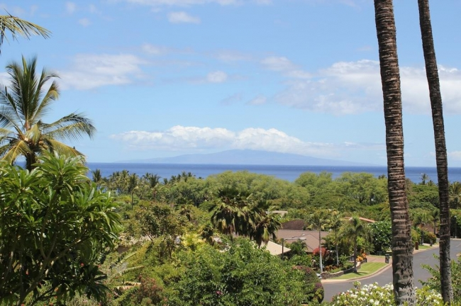 Hawaiian islands, Pacific Ocean and mature trees offer gorgeous views