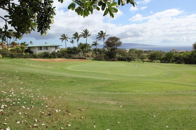 Wailea Ekolu Village is located on Wailea Blue Golf Course