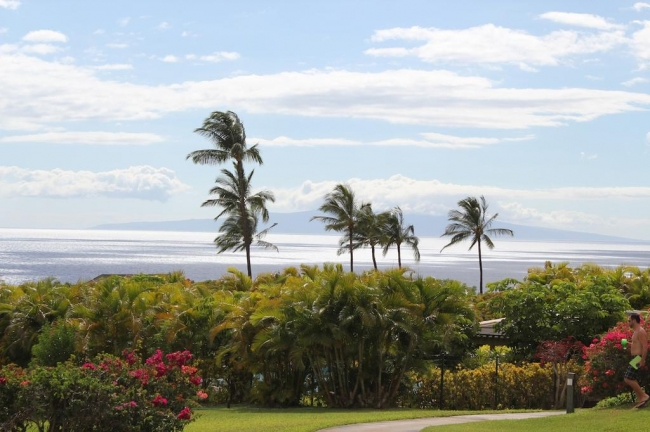 Wailea Beach is just 3 blocks away