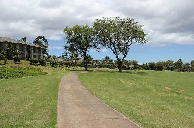 Cart paths are present for golfing