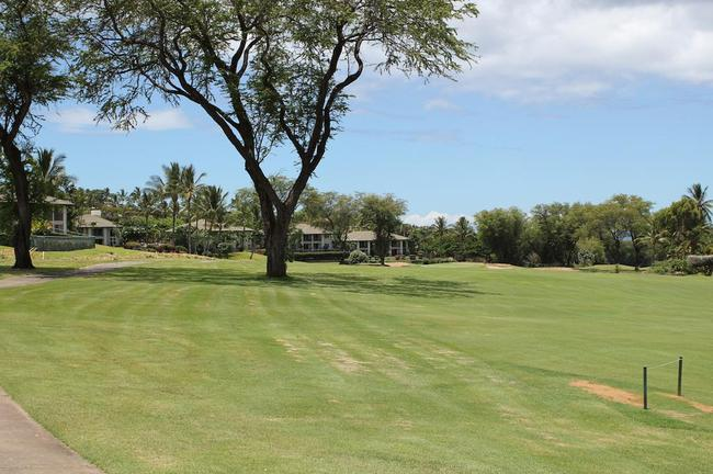 Mature landscaping sets off these greens at Wailea Fairway Villas